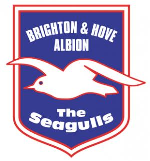 Football Team Logo for Brighton & Hove Albion