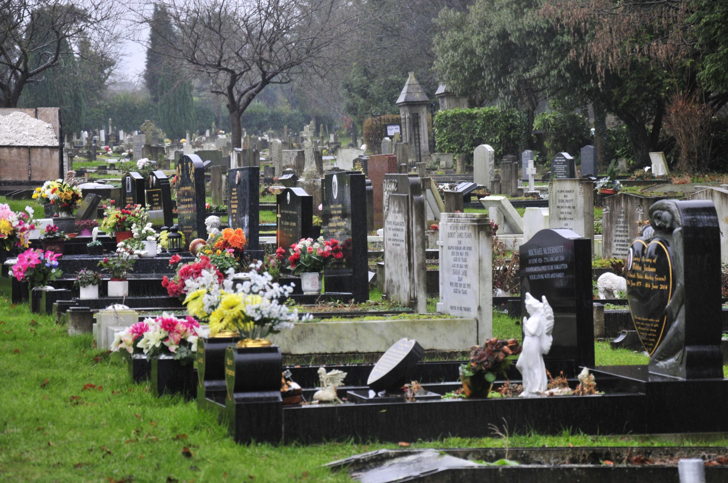 "Epsom Cemetery is nearing capacity, and the council says an extension is ""necessary""."